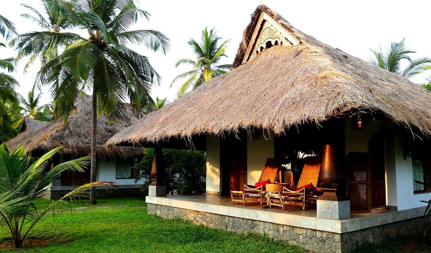 south-india-homestay.jpg